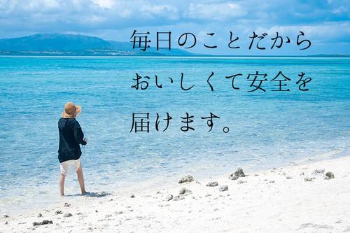 Nkj52_taketomishima500