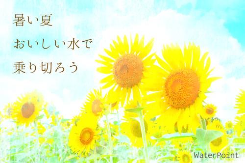 N745_zamanohimawaritoaozora5002