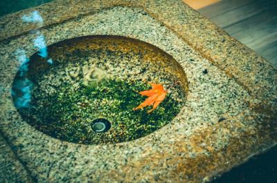 Zub78_akinohitohira20061115104701_t